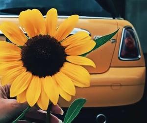 autumn, car, and mini image