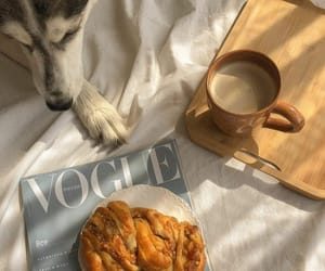 animal, breakfast, and food image