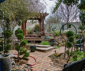 backyard, photography, and tranquility image