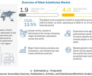 meat substitutes and meat substitutes market image