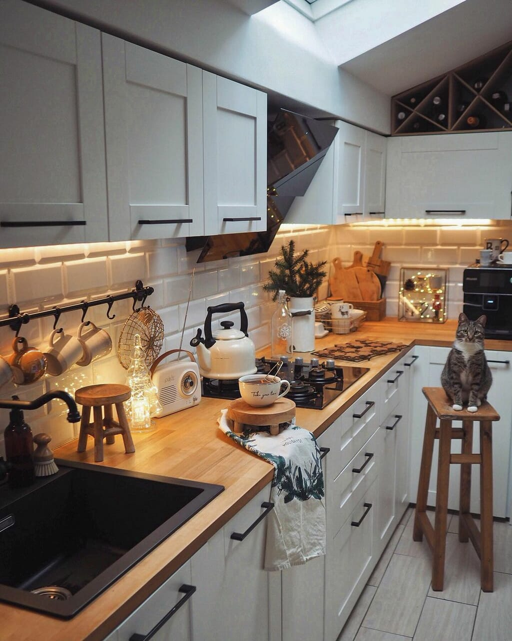 cat, home, and kitchen image
