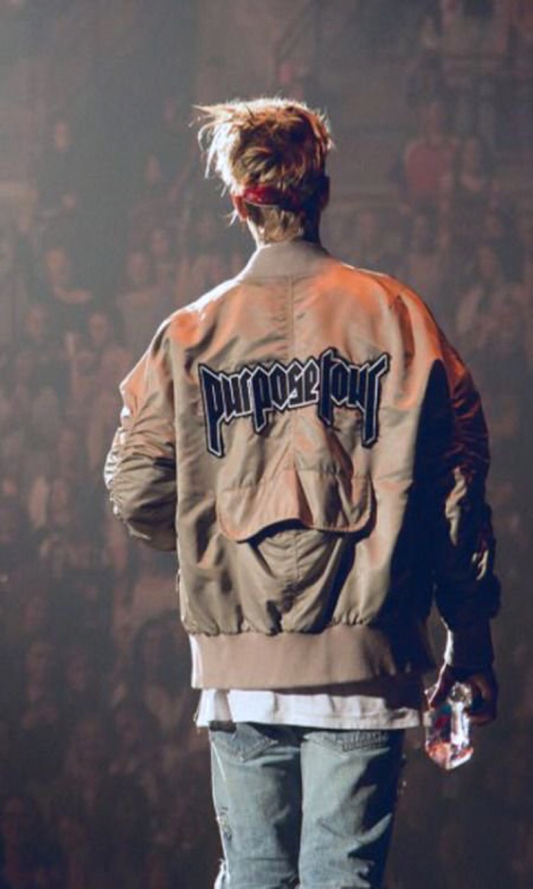 2016, fans, and purpose image