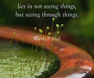 quotes, reality, and wisdom image