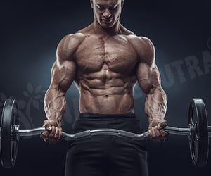 chest workout, chest workout tips, and nature sutra image