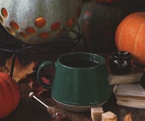 autumn, decoration, and fall image