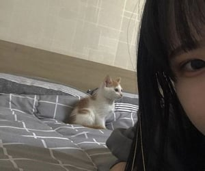 asian girl, edgy, and kitten image