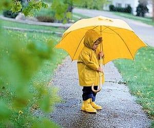 autumn rain image