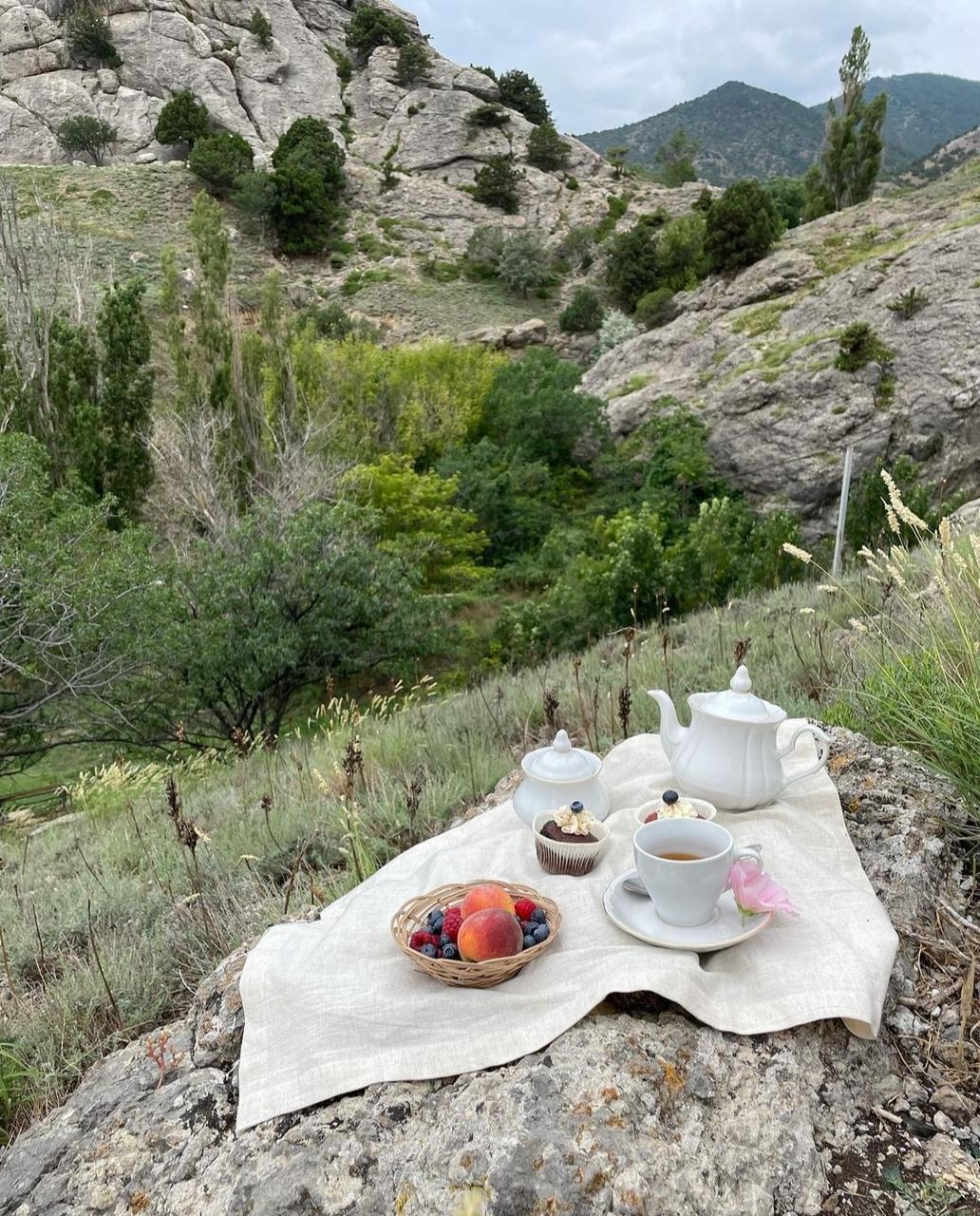 nature, picnic, and summer image