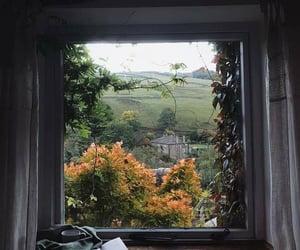 autumn, beauty, and peace image