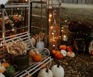 autumn, cozy, and light image