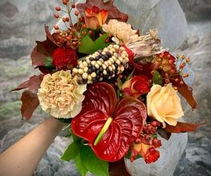 automne, Fleurs, and autumn image