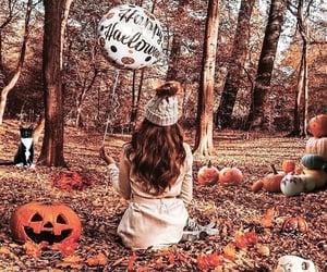 autumn, jack o lanterns, and pumpkins image