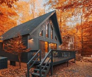autumn, fall, and autumn aesthetic image