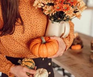 flowers, amazing, and autumn image