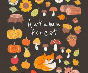 autumnal, cozy, and pattern image