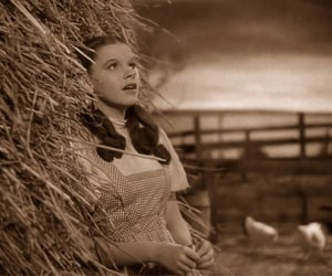 classic, fall, and film image