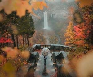 autumn, beautiful, and calmness image