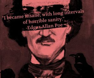 edgar allan poe, insane, and quote image