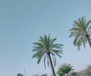baghdad, sky, and trees image