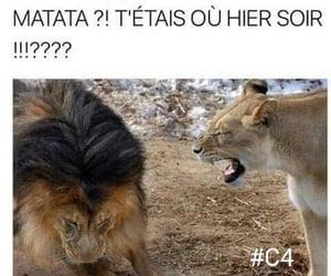 francais, hakuna matata, and le roi lion image