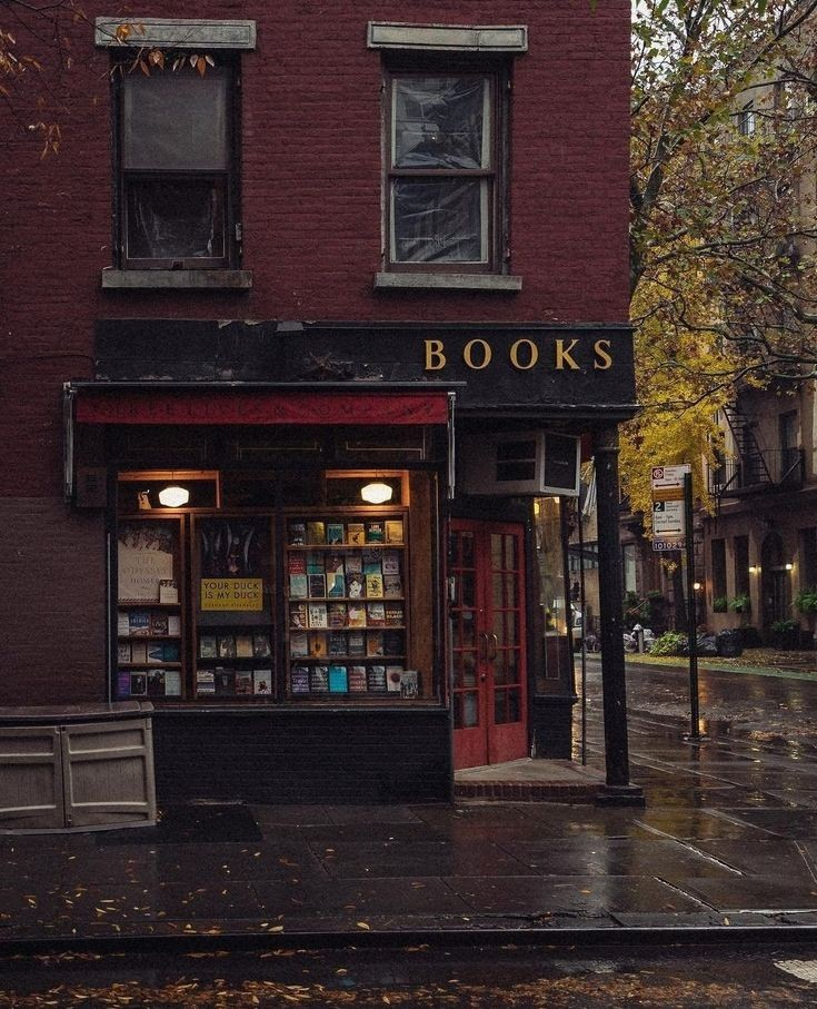 book, autumn, and aesthetic image