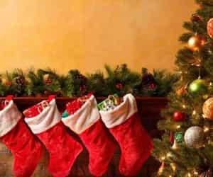 christmas day and christmas 2021 image