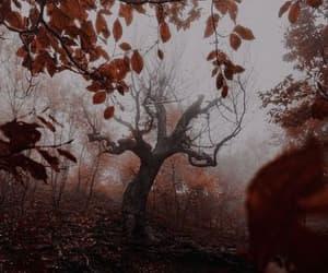 September, fall bucket list, and autumn bucket list image