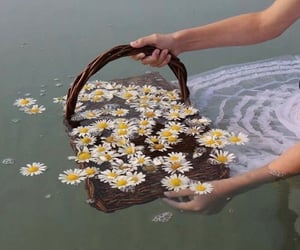 flowers, water, and girl image