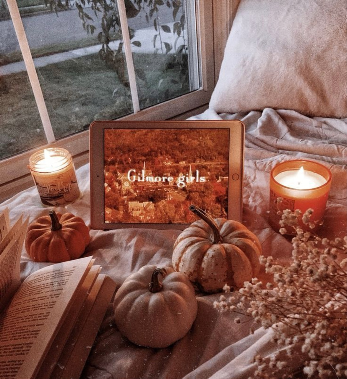 article, fall, and hobbit image