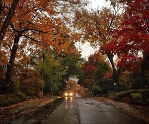autumn, cities, and orange image