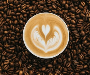 beans, brown, and coffee image