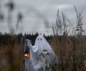 hilarious and spooky halloween image