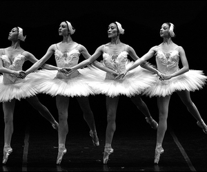 black and white and ballet image