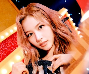 teaser, twice, and visual image