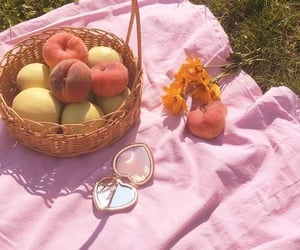 peach and picnic image