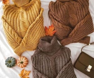 fashion, sweater, and fall image