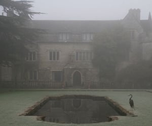creepy, fog, and Halloween image