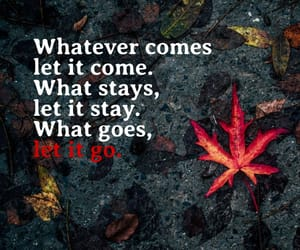letting go and quote image