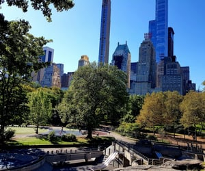 american dream, Central Park, and nyc image