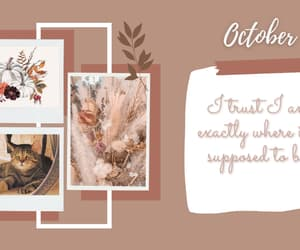 background, fall, and october image
