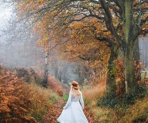 autumn, countryside, and derbyshire image