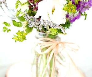 Wild Flowers and flowers blossom image