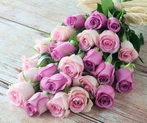 belleza, flores, and rosas image