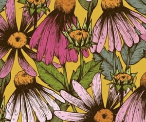 aesthetic, daisies, and hippy image