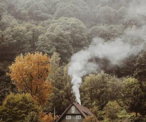 forest, autumn, and house image