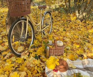 autumn, nature, and picnic image