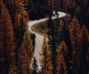 nature, road, and view image