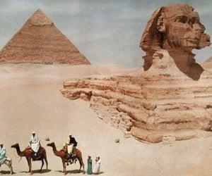 pyramids, cairo, and camel image