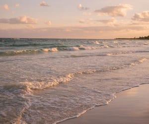 beach, ocean, and aesthetics image