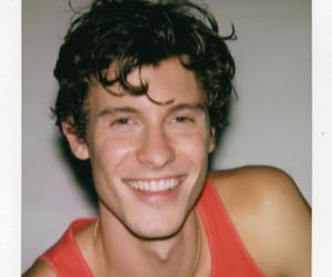 hot guy, his smile, and shawn mendes image